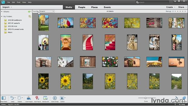 Touring the Organizer: Photoshop Elements 11 Essentials: 01 Importing and Organizing Photos