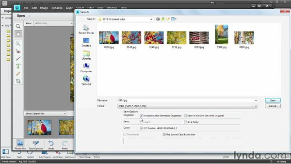Moving between Organizer and Editor: Photoshop Elements 11 Essentials: 01 Importing and Organizing Photos