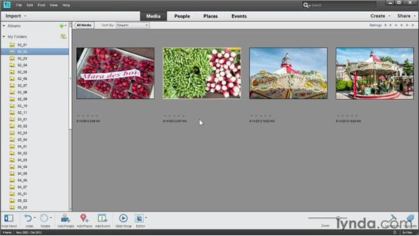 Displaying photo names and dates: Photoshop Elements 11 Essentials: 01 Importing and Organizing Photos