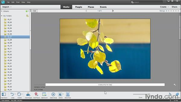 Adding photo captions: Photoshop Elements 11 Essentials: 01 Importing and Organizing Photos