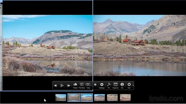 Comparing photos side by side: Photoshop Elements 11 Essentials: 01 Importing and Organizing Photos