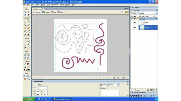 bitmap drawing: Fireworks MX 2004 Essential Training
