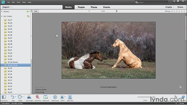 Moving and renaming files: Photoshop Elements 11 Essentials: 01 Importing and Organizing Photos