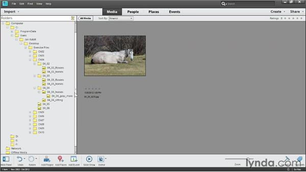 Moving and renaming folders: Photoshop Elements 11 Essentials: 01 Importing and Organizing Photos