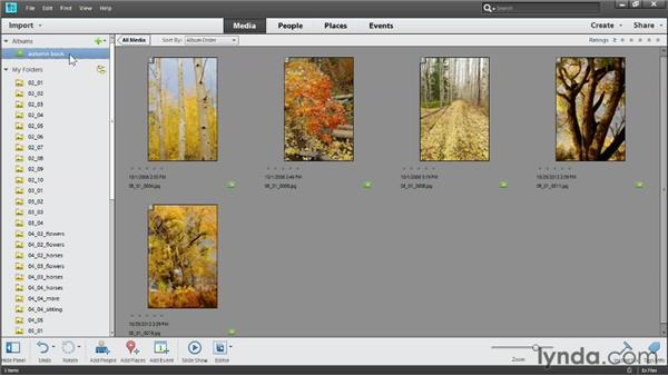 Creating albums: Photoshop Elements 11 Essentials: 01 Importing and Organizing Photos