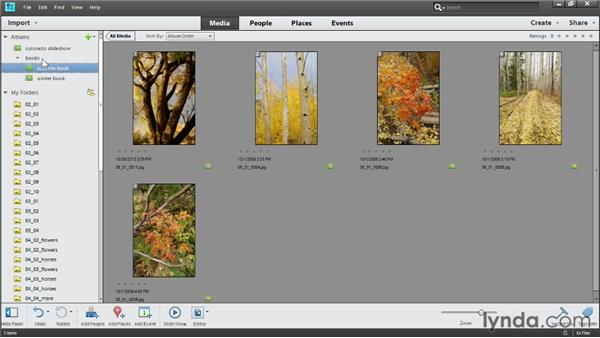 Organizing albums: Photoshop Elements 11 Essentials: 01 Importing and Organizing Photos
