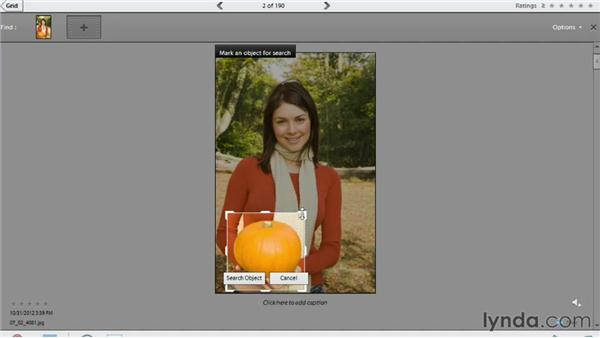 Finding photos by visual similarity: Photoshop Elements 11 Essentials: 01 Importing and Organizing Photos