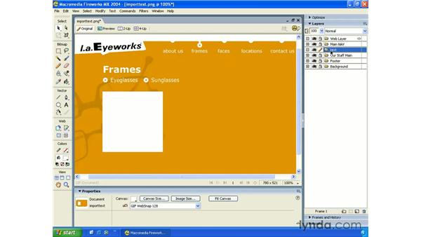 importing type: Fireworks MX 2004 Essential Training