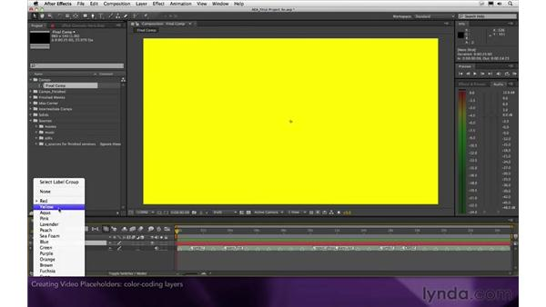 Creating video placeholders: After Effects Apprentice 16: Creating a Medical Opening Title