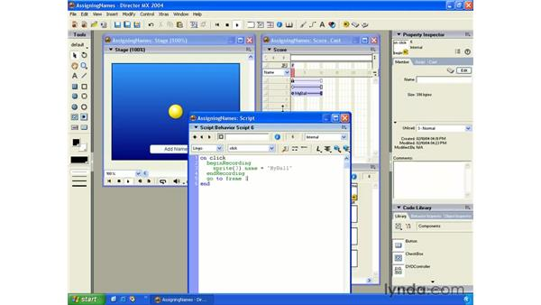 assigning names with scripting: New in Director MX 2004