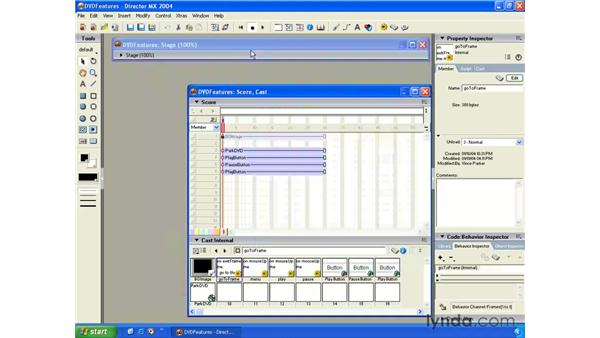 new DVD features: New in Director MX 2004