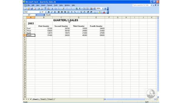 Recording a macro: Excel 2003 Essential Training