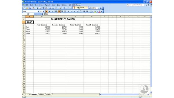 Global macros: Excel 2003 Essential Training