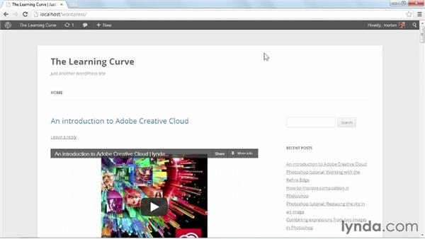Installing and activating Twenty Twelve: Start with a Theme: Video Blogs in WordPress