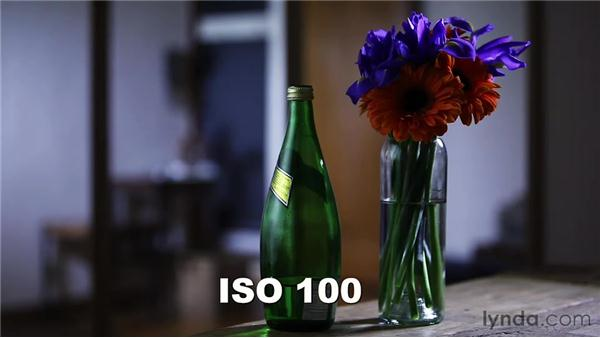 Understanding ISO: Up and Running with DSLR Filmmaking