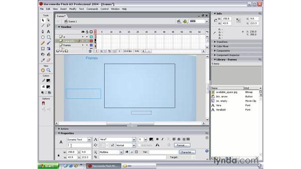 setting up: Flash MX 2004 Beyond the Basics