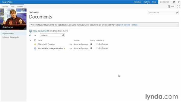 Using your SkyDrive for private documents: SharePoint 2013 New Features
