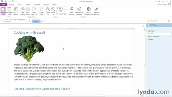 Organizing the user interface: OneNote 2013 Essential Training