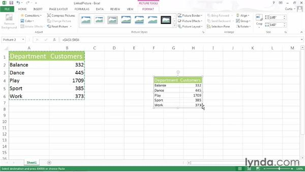 Creating a linked picture of a range: Excel 2013 Power Shortcuts