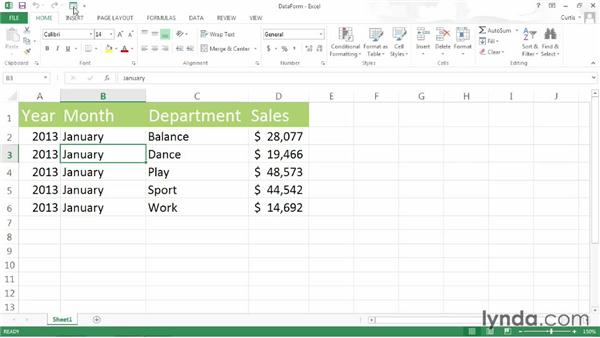 Creating a data entry form: Excel 2013 Power Shortcuts