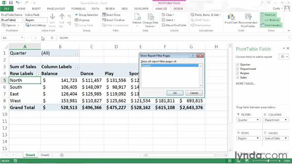 Creating separate sheets from a PivotTable