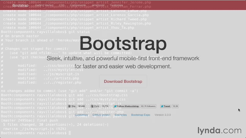 Bootstrap 3: Advanced Web Development