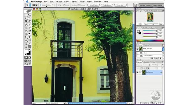 zoom and pan: Photoshop CS Essential Training