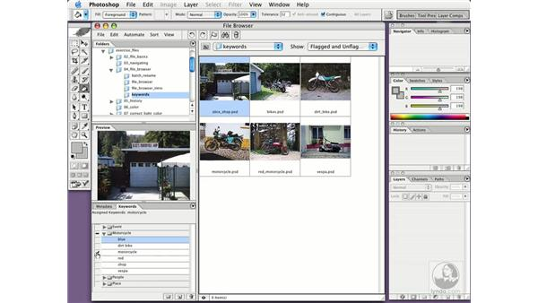 keywording and searching for images: Photoshop CS Essential Training