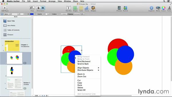 Working with groups: iBooks Author for Teachers: Fundamentals