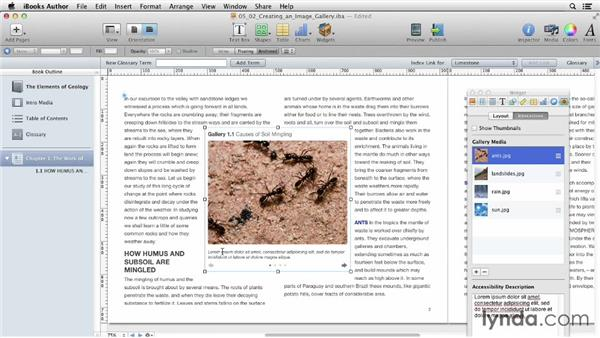 Creating an image gallery: iBooks Author for Teachers: Fundamentals