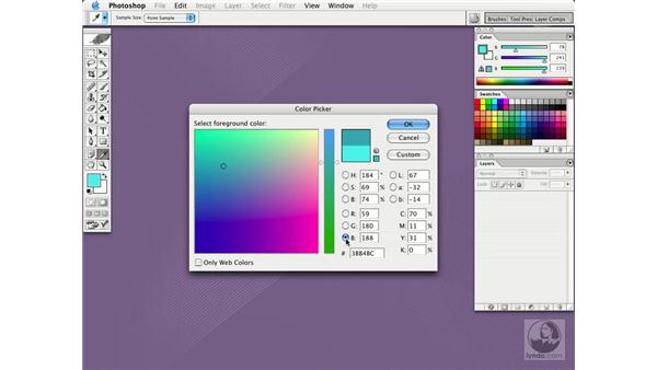 the color picker: Photoshop CS Essential Training