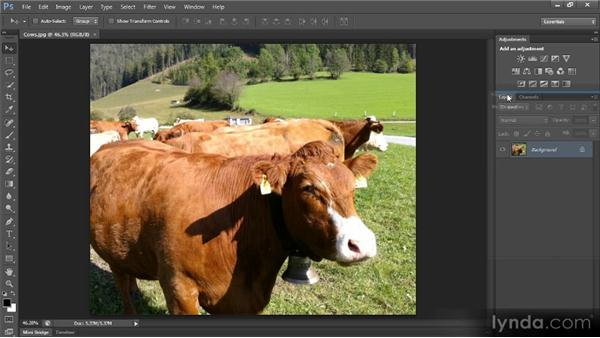 Configuring the Photoshop interface: Photoshop CS6 Image Optimization Workshop