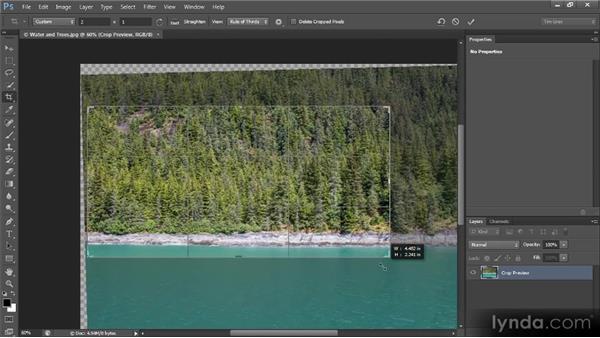Cropping the image: Photoshop CS6 Image Optimization Workshop