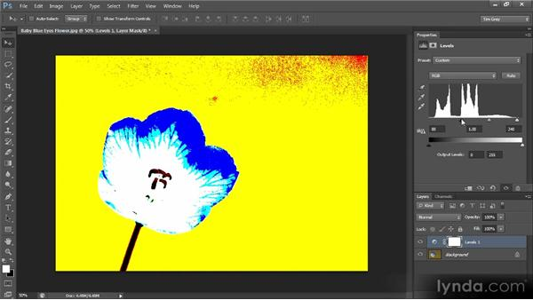 Refining tonality with Levels: Photoshop CS6 Image Optimization Workshop