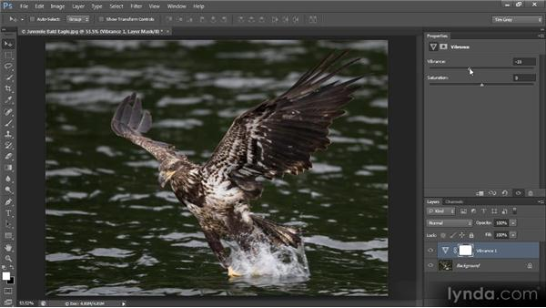 Boosting colors with Vibrance: Photoshop CS6 Image Optimization Workshop