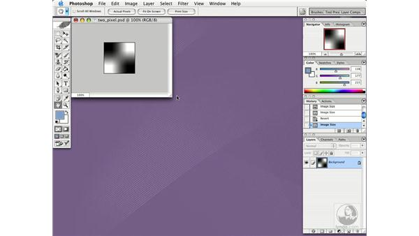 resizing images: Photoshop CS Essential Training