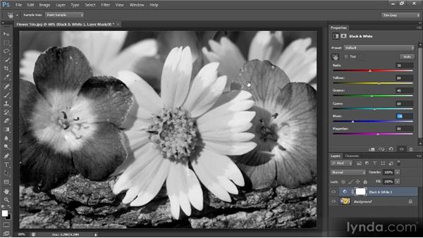 Creating a black-and-white interpretation of a color photo: Photoshop CS6 Image Optimization Workshop