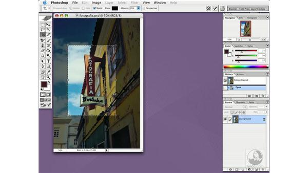 cropping images: Photoshop CS Essential Training