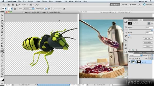Inserting and scaling a wasp: Photoshop Artist in Action: Uli Staiger's Wasp Attack