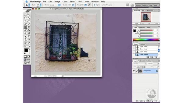 clone tool: Photoshop CS Essential Training