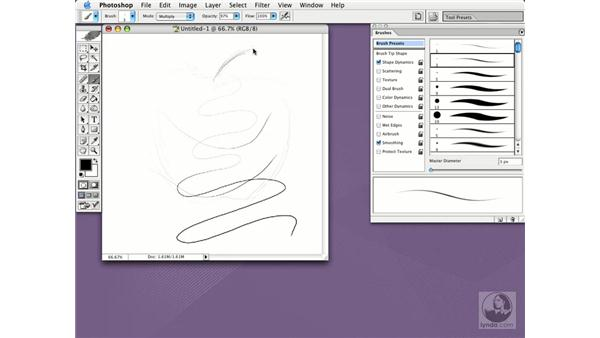 using a Wacom tablet: Photoshop CS Essential Training