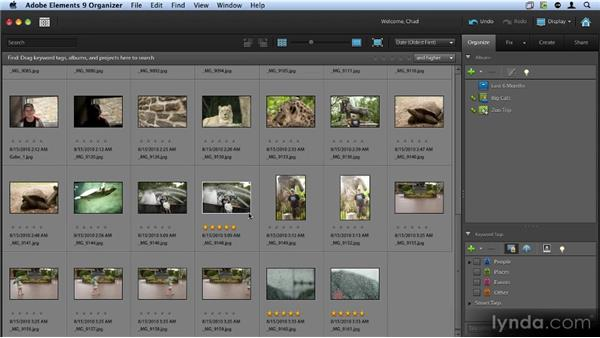 Organizing images using albums: Up and Running with Photoshop Elements 9