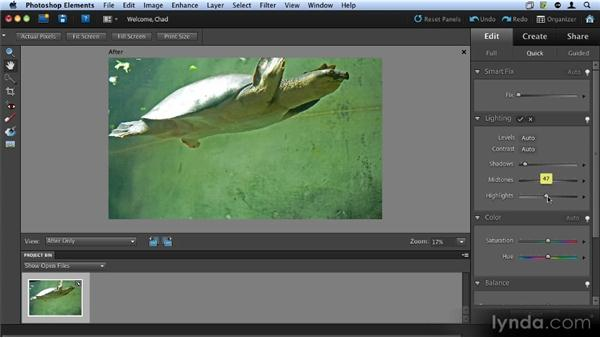 Using Quick Fix: Up and Running with Photoshop Elements 9