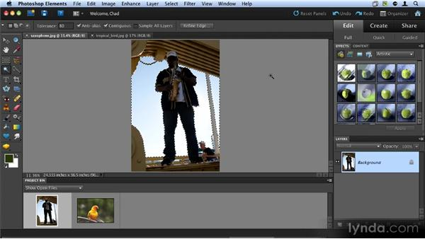 Automatic selection tools: Up and Running with Photoshop Elements 9