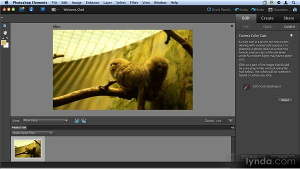 Removing a color cast: Up and Running with Photoshop Elements 9