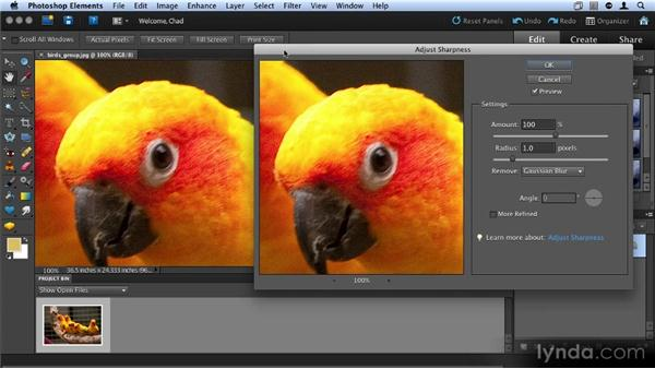 Sharpening an image: Up and Running with Photoshop Elements 9
