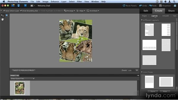 Creating a photo collage: Up and Running with Photoshop Elements 9
