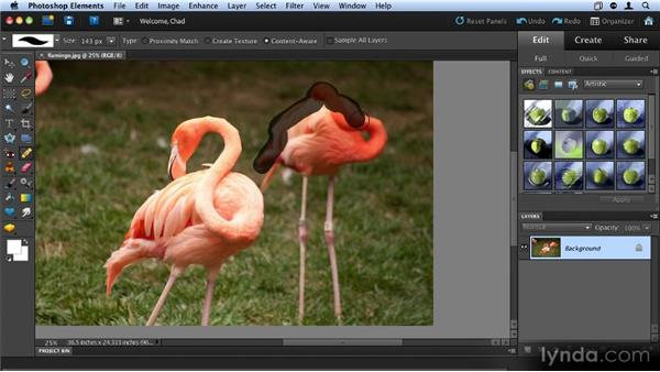 Removing unwanted items using Content-Aware Fill: Up and Running with Photoshop Elements 9
