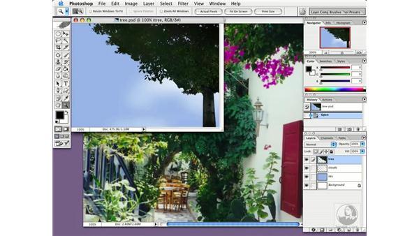 blur: Photoshop CS Essential Training