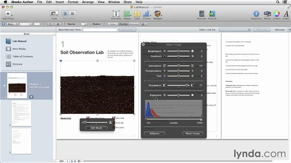 Adding photos and using Adjust Image to improve them: iBooks Author for Teachers: Creating a Lab Manual